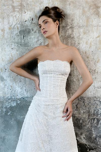 Strapless Lace Wedding Dress Picture